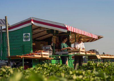 Der Erdbeerwagen